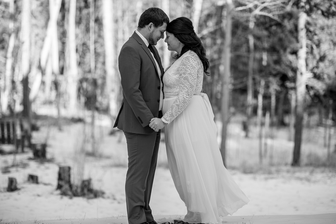 small wedding photographer Evergreen