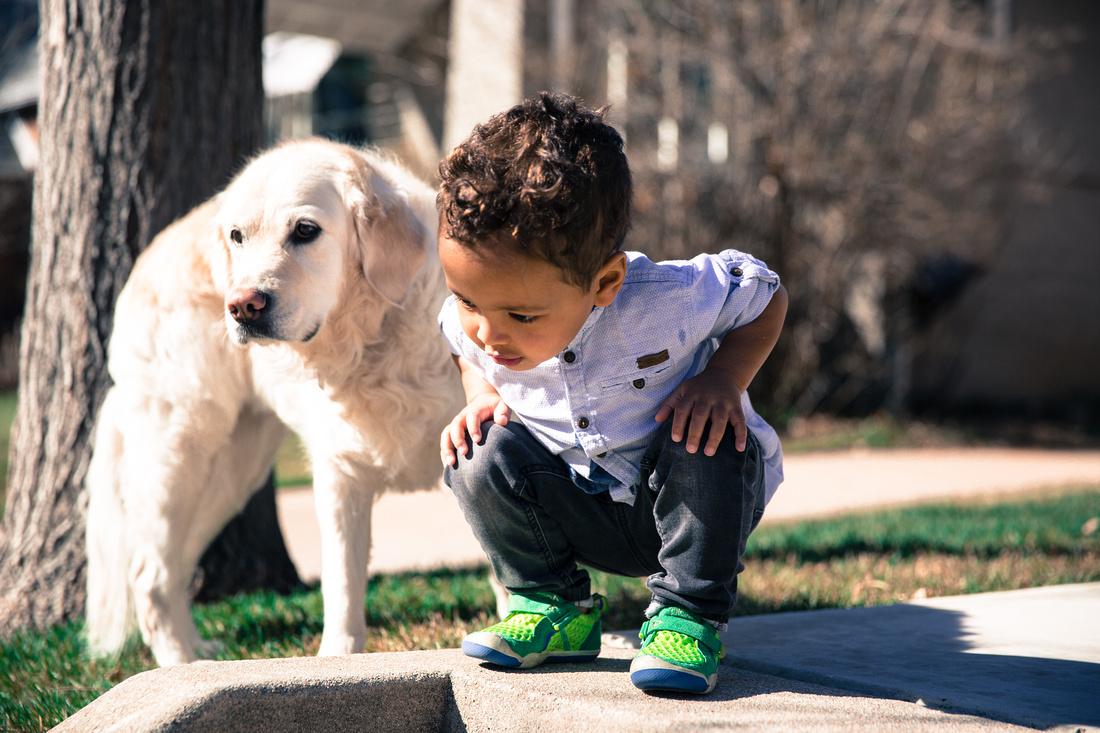 Denver family and pet portrait photography